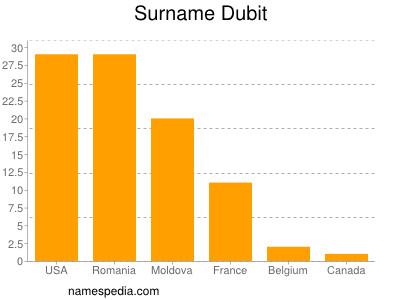 Surname Dubit