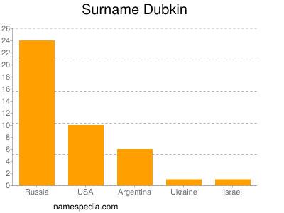 Surname Dubkin