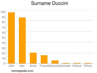 Surname Duccini