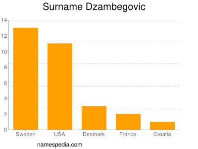 Surname Dzambegovic