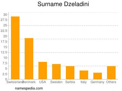 Surname Dzeladini