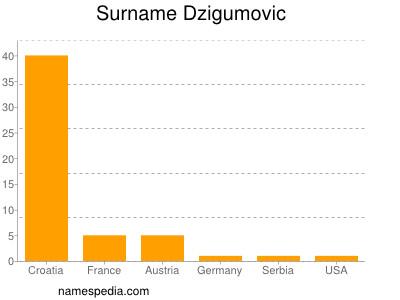 Surname Dzigumovic