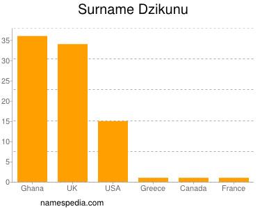Surname Dzikunu