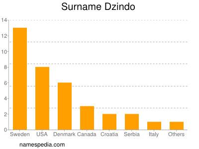 Surname Dzindo