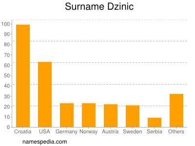 Surname Dzinic