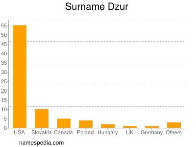 Surname Dzur