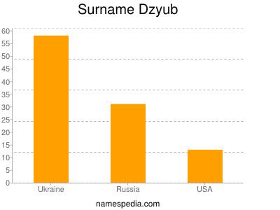 Surname Dzyub