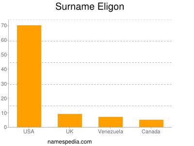 Surname Eligon
