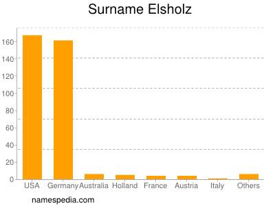 Surname Elsholz