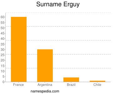 Surname Erguy