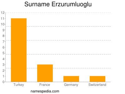 Surname Erzurumluoglu