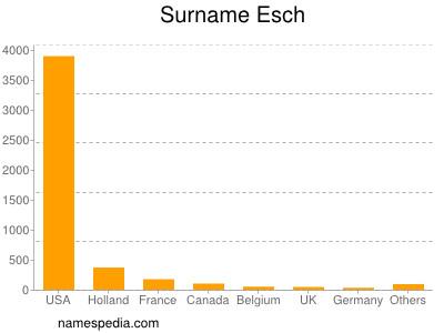 Surname Esch