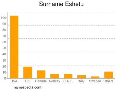 Surname Eshetu