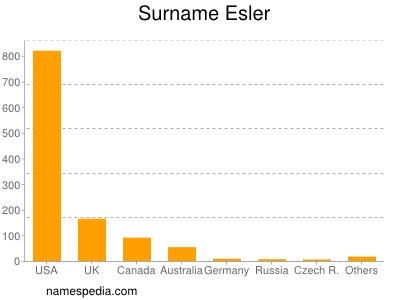 Surname Esler