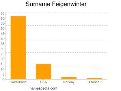 Surname Feigenwinter