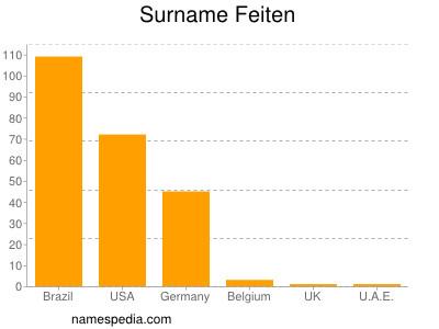 Surname Feiten
