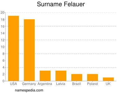 Surname Felauer