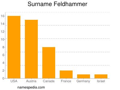 Surname Feldhammer