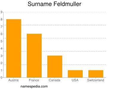 Surname Feldmuller