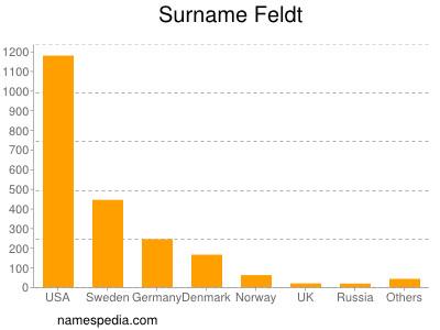 Surname Feldt