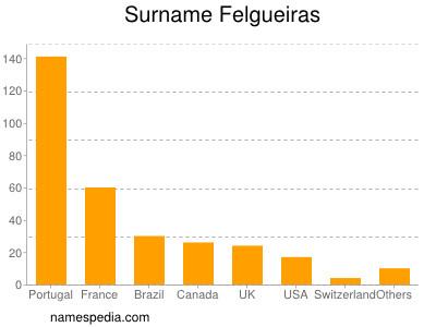 Surname Felgueiras