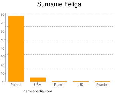 Surname Feliga