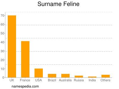 Surname Feline