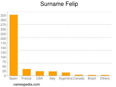 Surname Felip