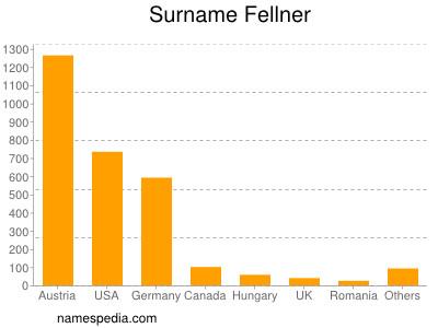 Surname Fellner