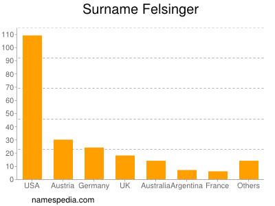 Surname Felsinger