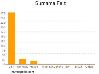 Surname Felz