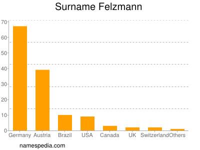 Surname Felzmann