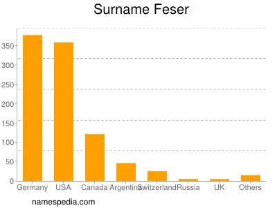 Surname Feser