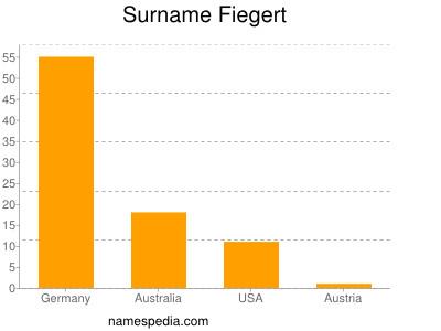 Surname Fiegert