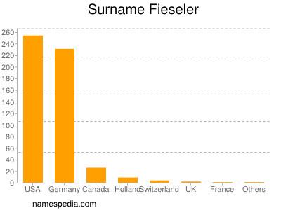 Surname Fieseler