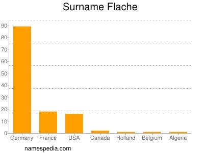 Surname Flache