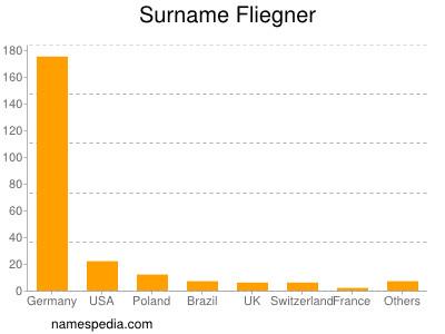 Surname Fliegner