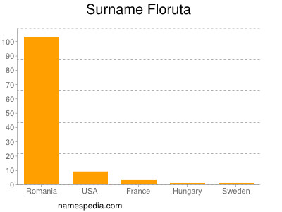 Surname Floruta