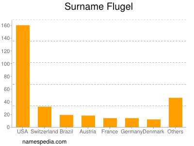 Surname Flugel