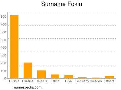 Surname Fokin