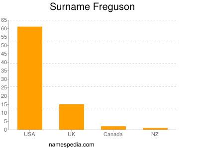 Surname Freguson