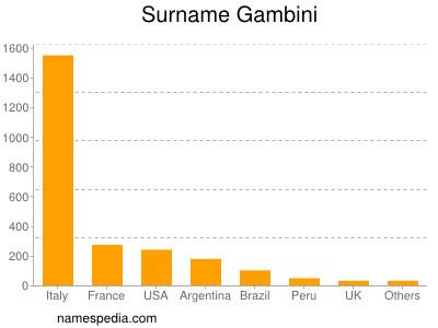 Surname Gambini