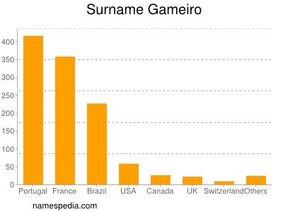Surname Gameiro