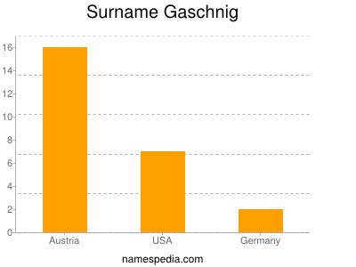 Surname Gaschnig