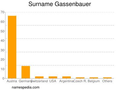 Surname Gassenbauer