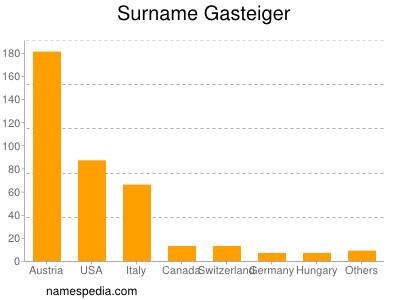 Surname Gasteiger