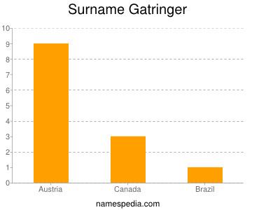 Surname Gatringer