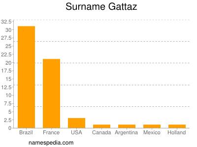 Surname Gattaz