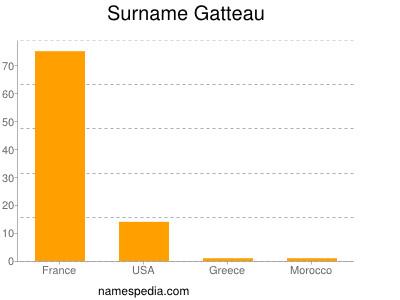 Surname Gatteau