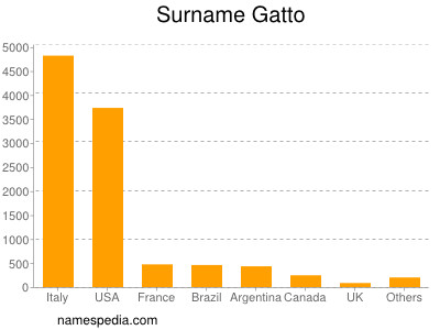 Surname Gatto